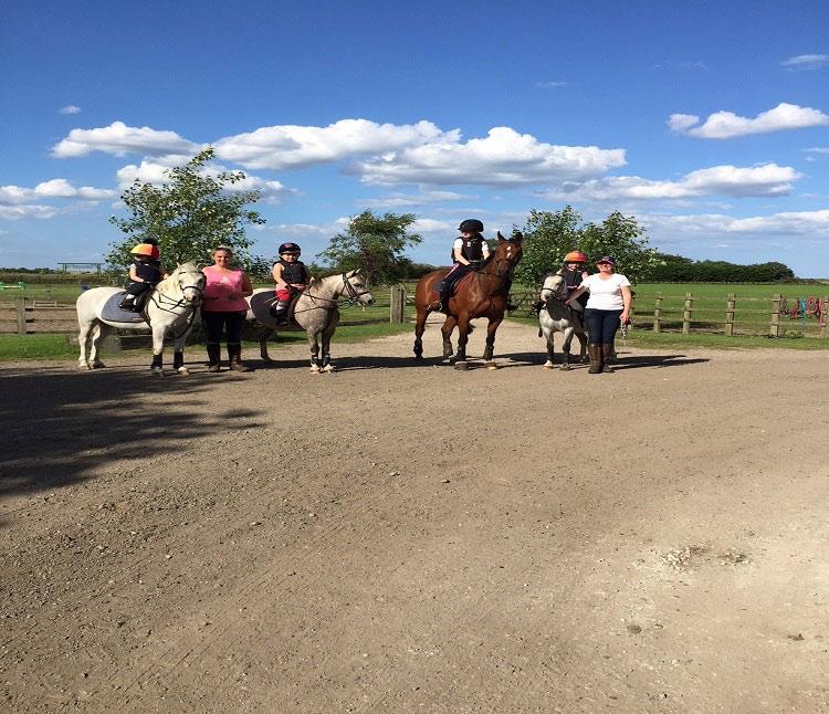 Pony Saddles